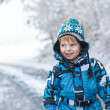 Stock Photo: Adorable toddler boy having fun with snow on winter day