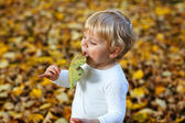 Little toddler boy playing in autumn park — Stock Photo
