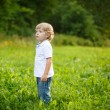 Little blond boy near forest lake, on summer evening — Stock Photo #31983207
