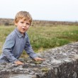 Little blond boy standing behind wall of old German castle. — Stock Photo #33325989