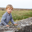 Little blond boy standing behind wall of old German castle. — Stock Photo