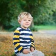 Stock Photo: Little blond boy of two years in autumn forest.