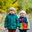 Stock Photo: Two little sibling boys walking through autumn forest