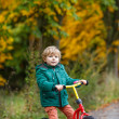 Cute preschool boy of three years riding bike in autumn forest — Stock Photo