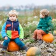 Two little siblings sitting on big pumpkin on cold autumn day — Stock Photo