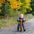 Cute toddler boy of two years riding bike in autumn forest — Stock Photo #33927457