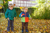 Two little sibling boys having fun with yellow foliage in autumn — Stock Photo
