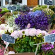 Stock Photo: Flowers for sale at Germflower market.