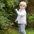 Portrait of cute toddler boy in forest — Stock Photo