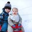 Two little siblings having fun on sledge — Stock Photo