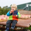 Little toddler boy of two years picking red apples in an orchard — Stock Photo