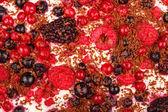 Sweet dessert tiramisu with strawberries, raspberries and bluebe — Stock Photo