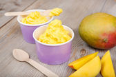 Frozen creamy ice yoghurt with fresh mango — Stock Photo