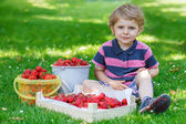 Happy little toddler boy in summer garden with buckets of ripe s — Stock Photo