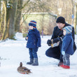 Stock Photo: Father and two little siblings boys feeding ducks in winter.