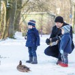 Father and two little siblings boys feeding ducks in winter. — Stock Photo #39679675