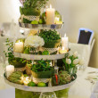 Beautiful table set  for green wedding or event party, indoors, — Stock Photo #42866159