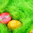 Colorful easter eggs in nest as traditional detail of Easter hol — Stock fotografie #43013637