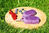 Domácí zmrzlina Pop s různými plody — Stock fotografie