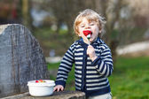 Lovely blond boy of two years eating strawberries outdoors — Stock Photo