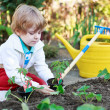 Adorable blond boy planting seeds and seedlings of tomatoes — Stock Photo #46123445