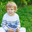 Happy little toddler boy on pick a berry farm picking strawberri — Stock Photo #48270721