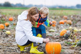 Mother and two little sons having fun on pumpkin patch. — Stock Photo