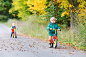 Active twin boys driving on bikes in autumn forest — Stockfoto