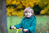 Cute active preschool boy driving on his bike in autumn forest — Stock Photo