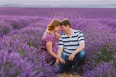 Romantic couple in love in lavender fields in Provence — Stock Photo