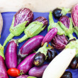 Fresh eggplants, aubergine vegetables on street market in Proven — Stock Photo #51203515