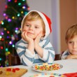 Two little siblings boys happy aboutn selfmade gingerbread cooki — Stock Photo #51490337