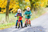 Two little sibling boys having fun on bikes in autumn forest. — Stock Photo