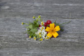 Bouquet of flowers and berries — Stock Photo