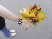 Bunch of leaves in the hand — Stock Photo