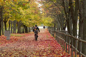 Man rides a bicycle in the autumn park — Stock Photo