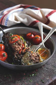 Stuffed Eggplant with minced meat and cherry tomatoes — Stock Photo