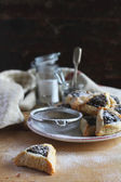 Cookies with dried fruit filling, nuts and icing sugar — Stock Photo