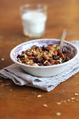 Homemade granola with dried cranberry and nuts — Stock Photo