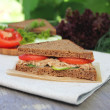Rye bread sandwich with tuna, tomato slices and cucumber — Stock Photo