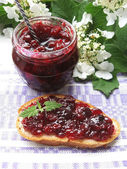 Jar of cranberry jam and toast with cranberry jam — Stock Photo