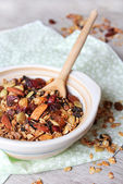 Healthy homemade granola or muesli with oats — Stock Photo