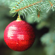Traditional christmas or new year decorated tree with a red ball — Stock Photo