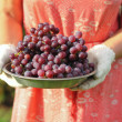 Clusters of fresh grape harvest in a bowl — Stock Photo