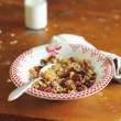 Healthy homemade prganic granola or muesli with oat flakes, dried fruits and nuts in a plate with a bottle of milk for breakfast — Stock Photo #41942419