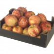 Box of Gala Apples — Stock Photo