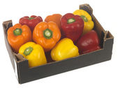 Mixed Peppers — Stock Photo