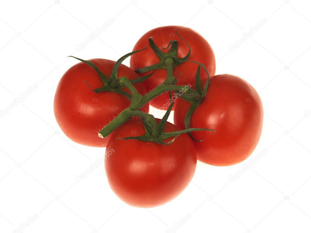 Vine Grown Tomatoes isolated white background — Stock Photo #13132897