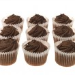 Chocolate Cup Cakes — Stock Photo #13172353