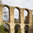 Roman aqueduct — Stock Photo #18234279